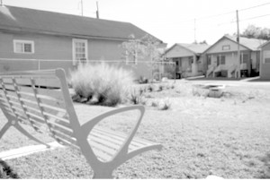 The New Orleans Redevelopment Authority took this empty lot on Forshey Street and made it into a rain garden.